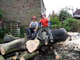 Smart Trees Ltd - Bristol Tree Surgeons